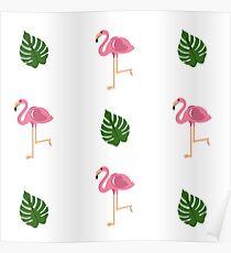Flamingo - Summer Trend 2017 Poster