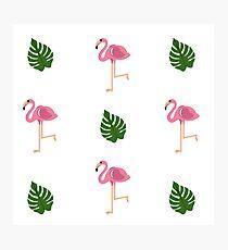 Flamingo - Summer Trend 2017 Photographic Print