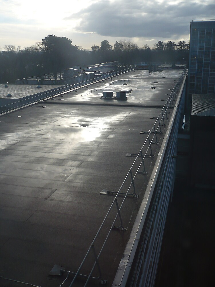 Oxford Brookes university roof by Caroline Cage