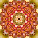 One Wish Mandala in Green, Yellow, Pink, Orange and Purple by Kelly Dietrich
