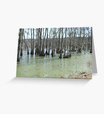 Salt Marsh 2 Greeting Card