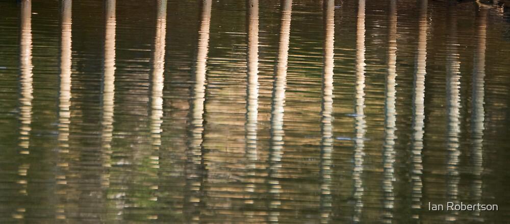 reflection by Ian Robertson