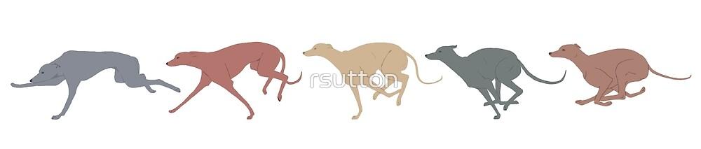 Greyhounds running by rsutton