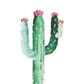 Cactus de sageanderss