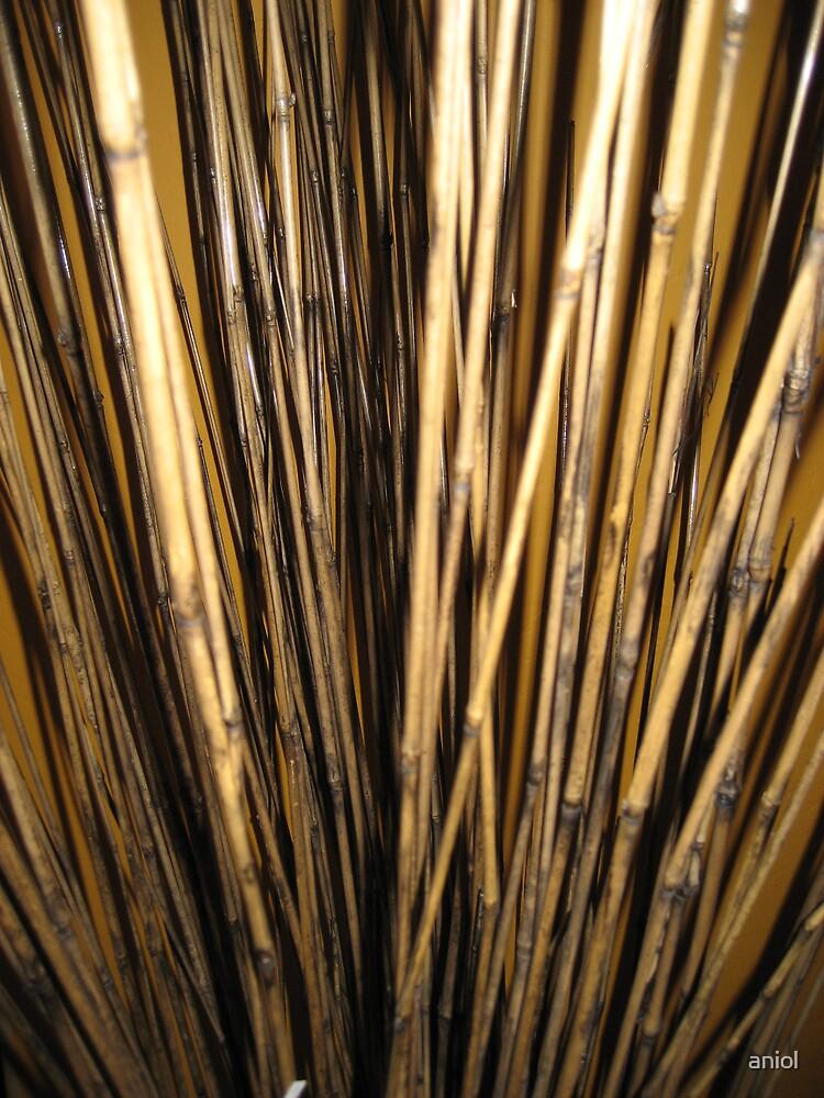 bamboo sticks by aniol