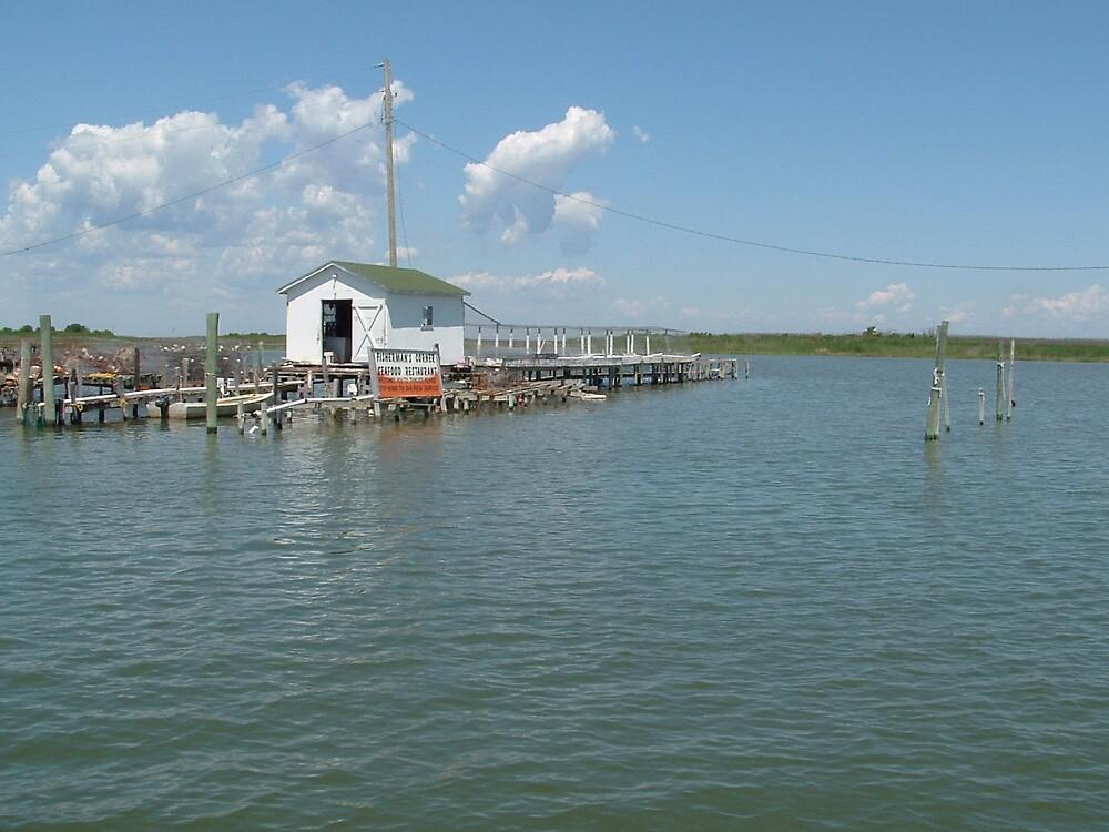 Crab Shack on the Chesapeake Bay by sammy123