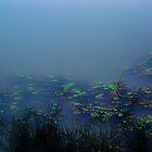 The Monastery Lake......... by Imi Koetz