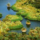 The Swamp..........New Zealand by Imi Koetz