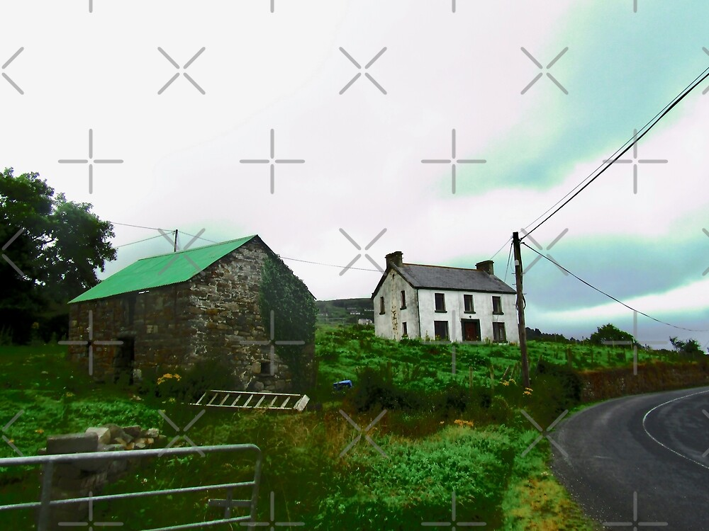 Irish Barn #2, Donegal, Ireland by Shulie1