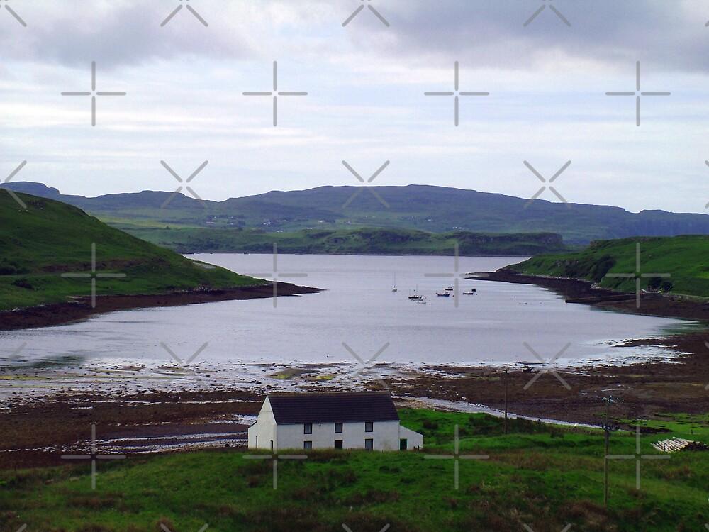 Skye View by Tom Gomez