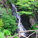 Waterfall at Dunvegan, Isle of Skye, Scotland by Tom Gomez