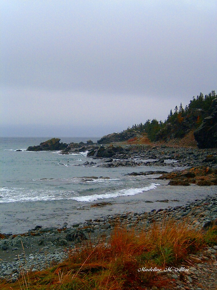 Kings Cove, Newfoundland by Madeline M  Allen