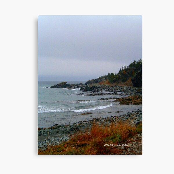 Kings Cove, Newfoundland Canvas Print