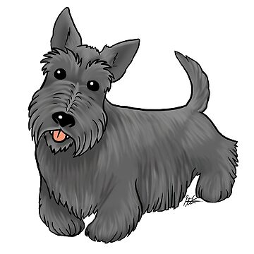 Scottish Terrier by jameson9101322
