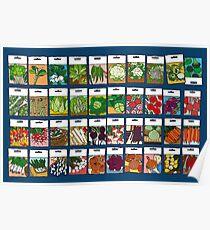 Vegetable seeds pattern Poster