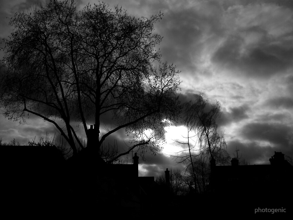 trees and chimneys by photogenic