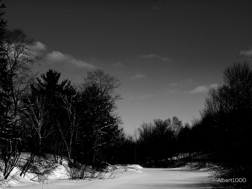 Dark winter by Albert1000