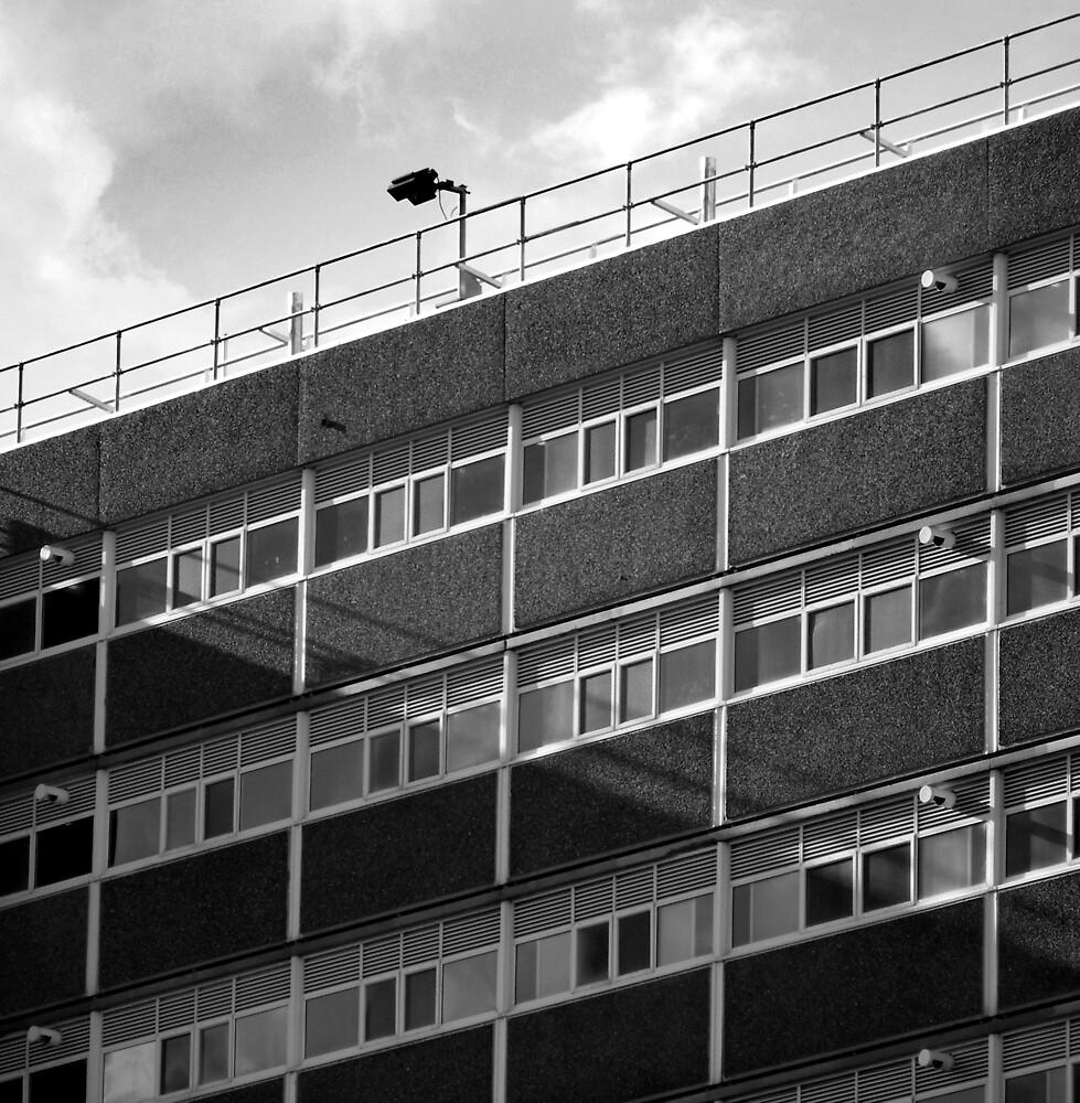 Surveillance by Bruce  Watson