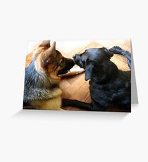 DOGS COMMUNICATION  Greeting Card