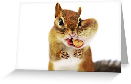 """""""Would you have a SMALLER peanut?..."""" by Laurie Minor"""