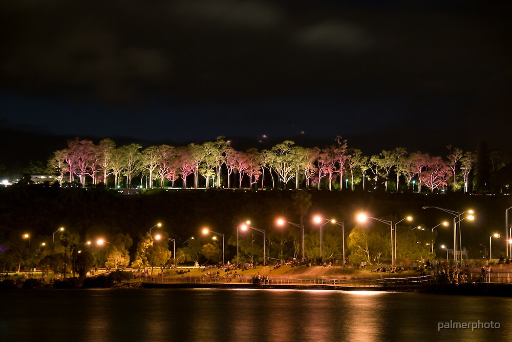 Kings Park at Night, Perth, Western Australia by palmerphoto