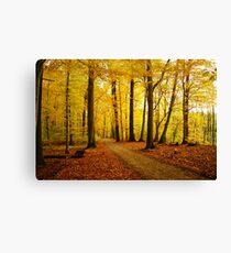 Autumn strikes Canvas Print
