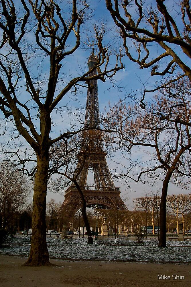 Eiffel in winter by Mike Shin