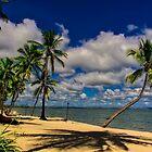 Fiji paradise island by Froggie