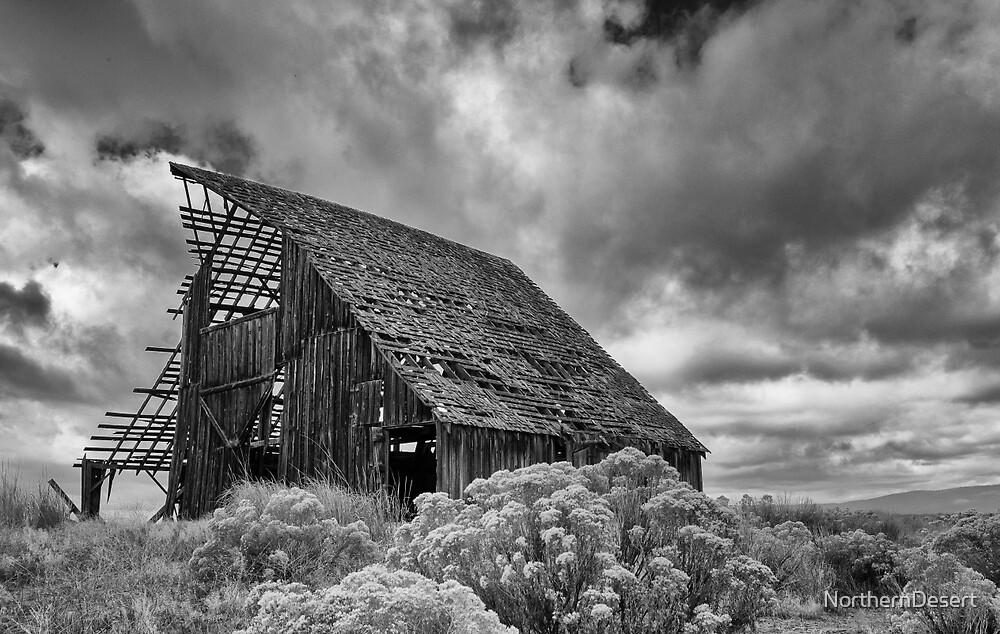 Abandoned Barn by NorthernDesert
