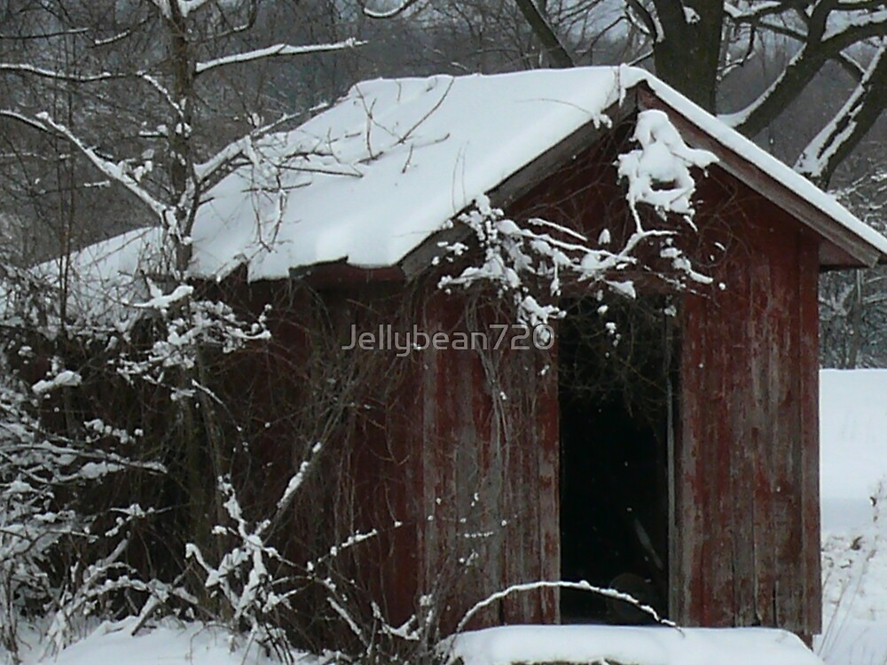 Old Shack by Jellybean720