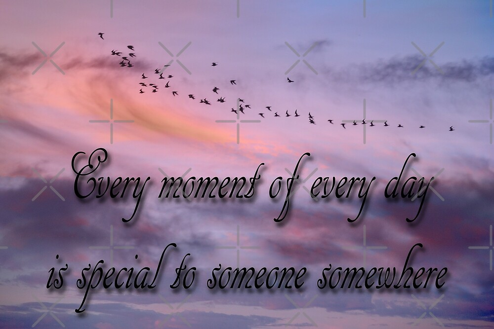 Everyday Moments by CarolM