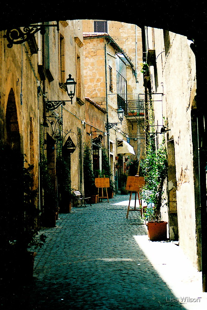 Orvieto Alley, Italy by Lisa Wilson