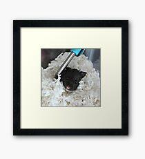 Cute Hamster Framed Print