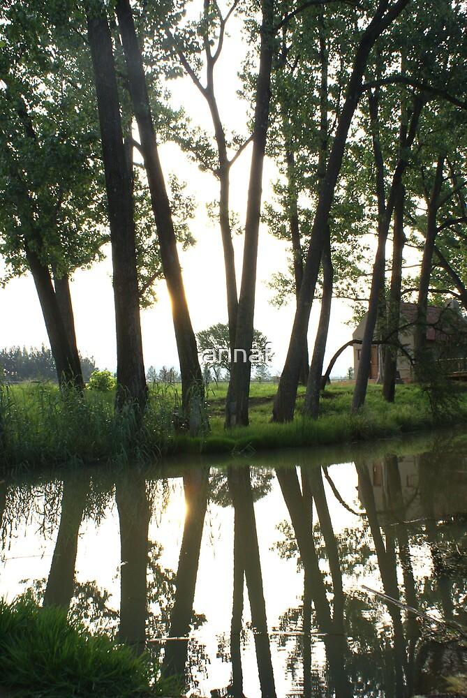 Stil water by annaf