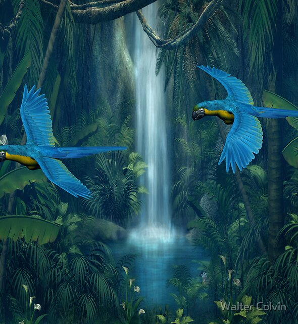 Jungle Water Fall by Walter Colvin