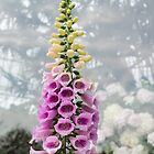 Dangerous Beauty - Exquisite, Elegant Poisonous Foxglove by Georgia Mizuleva