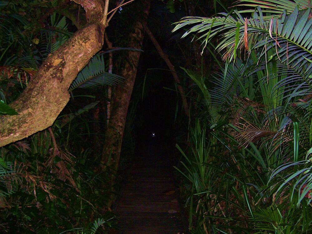 Dark Path by xXDarkAngelXx