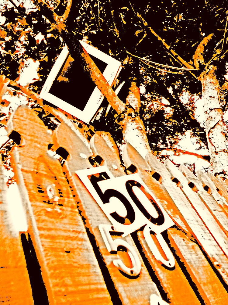 fifty by Richard  Durocher