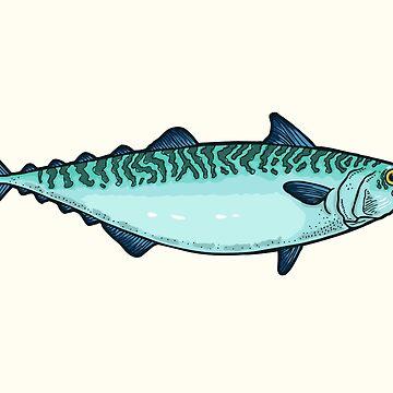 Mackerel by smalldrawing