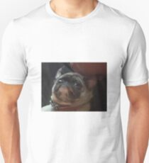 A picture of a questioning pug Unisex T-Shirt
