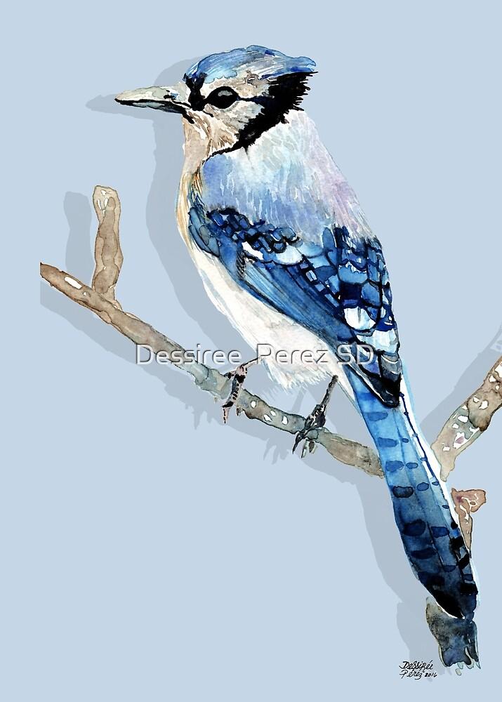 Blue Jay bird by Dessiree  Perez