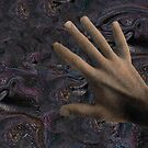 Touching the Universe by Wayne King