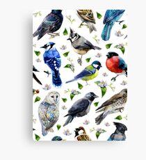 spring birds watercolor Canvas Print