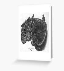 Horse team - Percherons Greeting Card