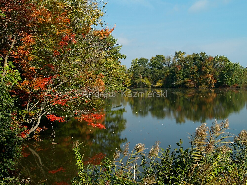 Autumn Reflections by andykazie