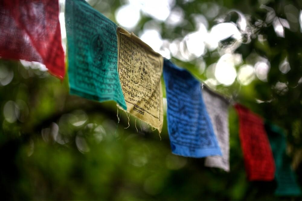 Tibetan Buddhist Prayer Flags by DJ Fortune