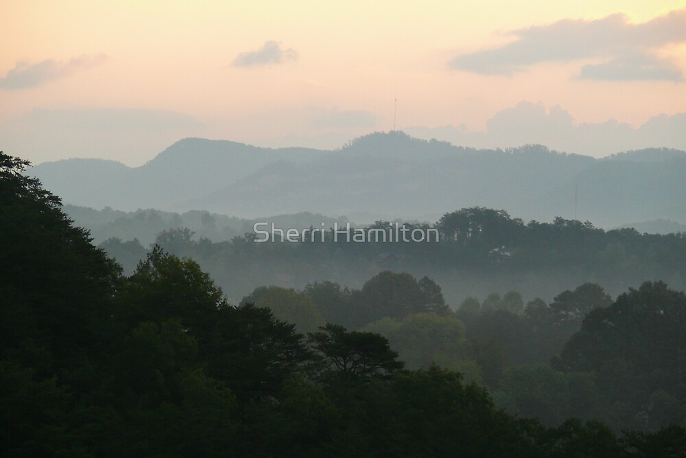 Fog in the Mountains by Sherri Hamilton