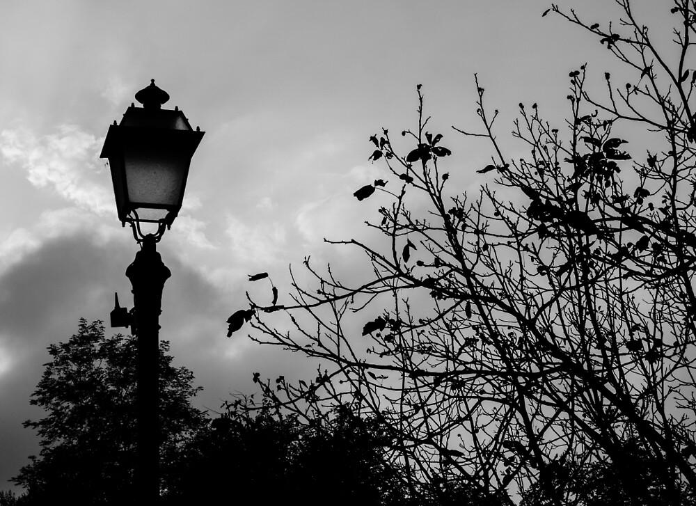 When the lights are down  by Andrea Mazzocchetti