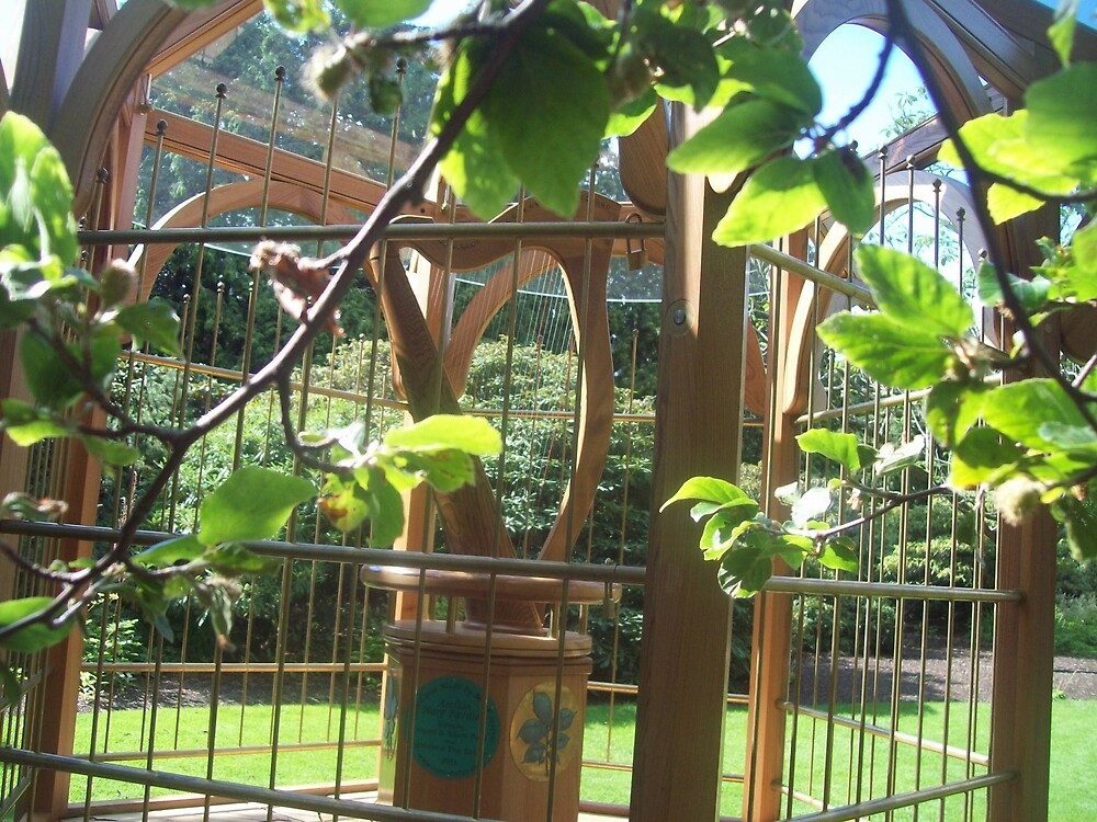 Tranquility In Edinburgh Botanics  by taryn-purple