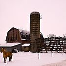 Winter on the farm- for willyn1ru by cherylc1